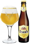 Bush Blond 24x33cl