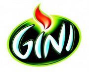 Gini 4x1,5L